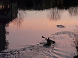 kayakers-3940_1280