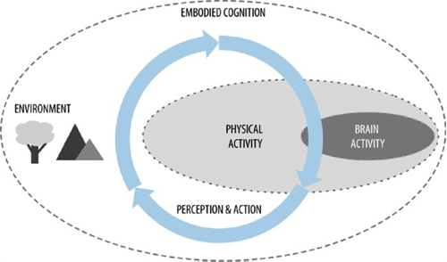 Diagram illustrating Embodied Cognition
