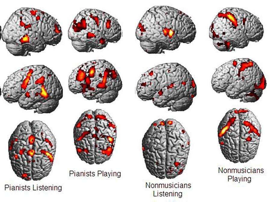 musician-mirror-neurons